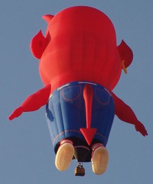 Little Devil Balloon Back View by Z-Balloon Adventures Iowa's Balloon Ride Company